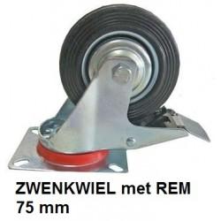 ZWENKWIEL Rem 75 mm